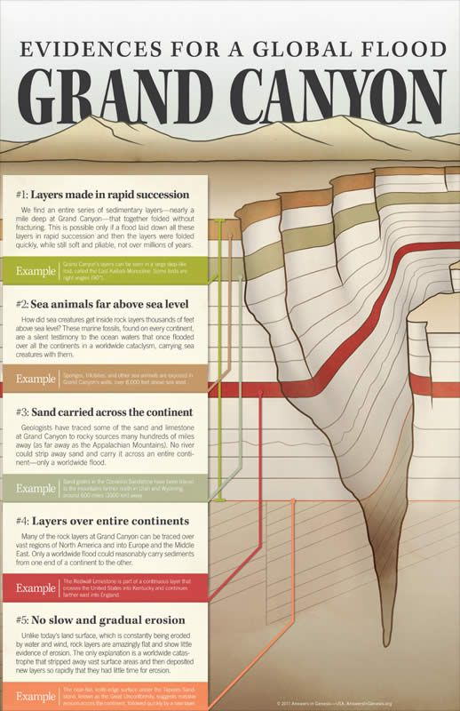 Evidences for a Global Flood—Grand Canyon Wall Chart: PDF download