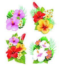 Resultado de imagem para flowers png
