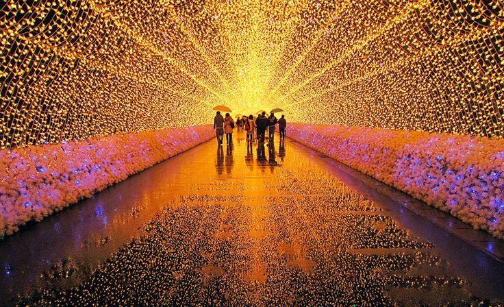 В этом году в Санкт-Петербурге пройдет Фестиваль света