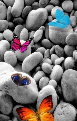 Read: Poems of love #wattpad #Poetry http://w.tt/RtXW32