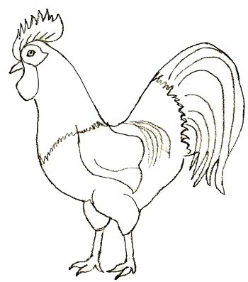 How to Draw a Rooster - Step by Step