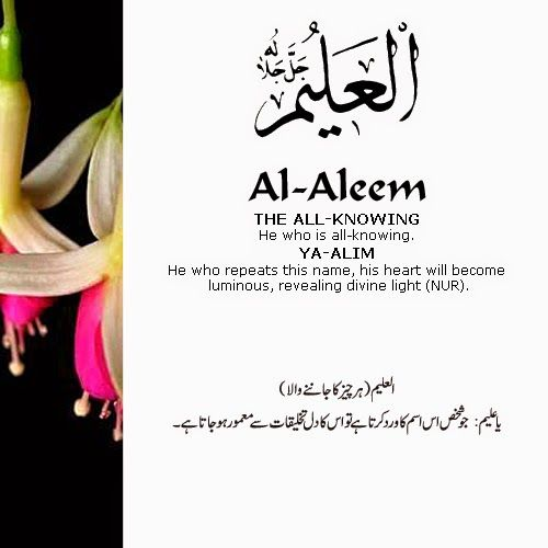 The 99 Beautiful Names of Allah with Urdu and English Meanings: 17- ALLAH names