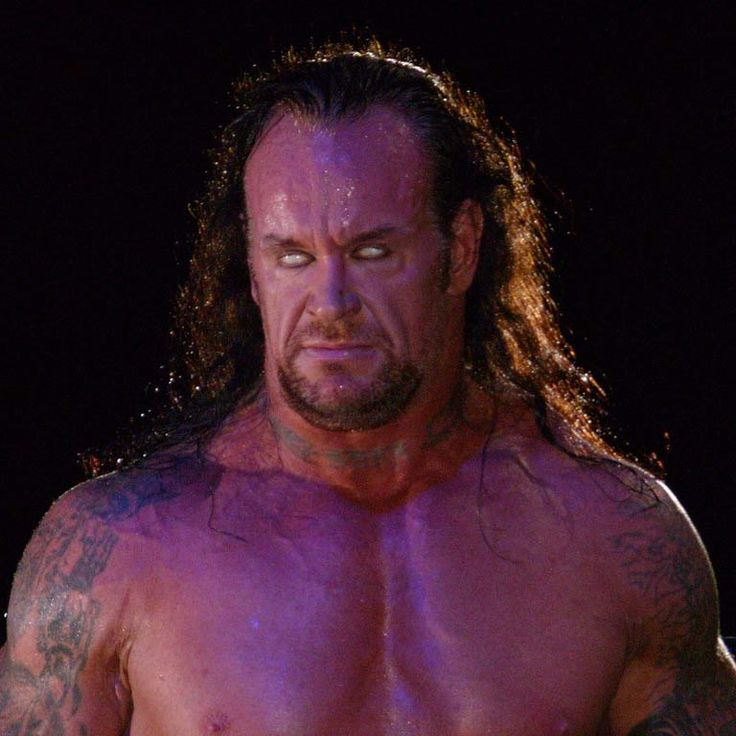 WWE superstar Undertaker rumoured to be ill; Brock Lesnar appears ...