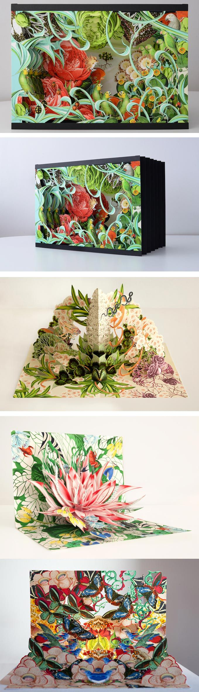 Bozka illustrates and hand-crafts pop up and accordion books. They take between 3 and 4 weeks to make! The most tedious parts can take 14 hours.