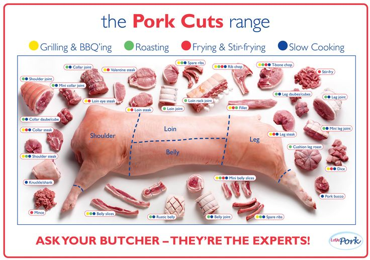 cuts of pork chart | Featuring 30 cuts of fresh pork and suitable methods of cooking