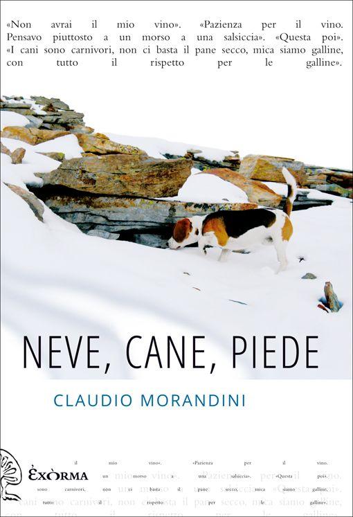 """Claudio Morandini e """"Neve, cane, piede"""", un libro sulla solitudine e la pazzia? Forse, di sicuro un libro bellissimo."""
