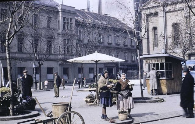 Fascinating Color Photos That Capture Street Scenes Of Zagreb In 1953 Street Scenes Zagreb Mexico Travel