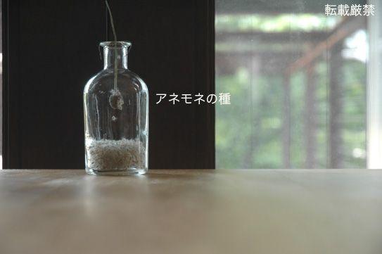 石黒智子 Ishiguro Tomoko
