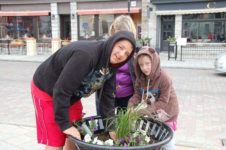 Planting at the 2014 Kingston Blooms Kick Off Event