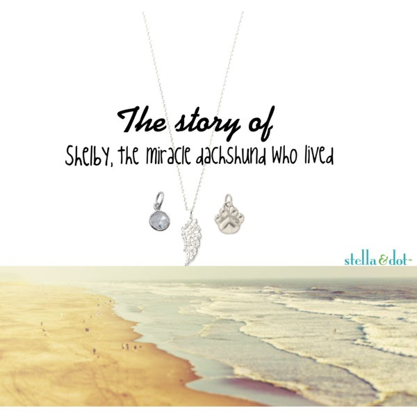 shelby told in charms by jessica-noelle-roehm on Polyvore http://www.stelladot.com/ts/ko4p5 www.stelladot.com/jessicaroehm