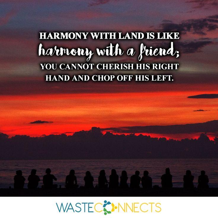wise words... #treehugger  #savetheplanet #climatechange #plantatree