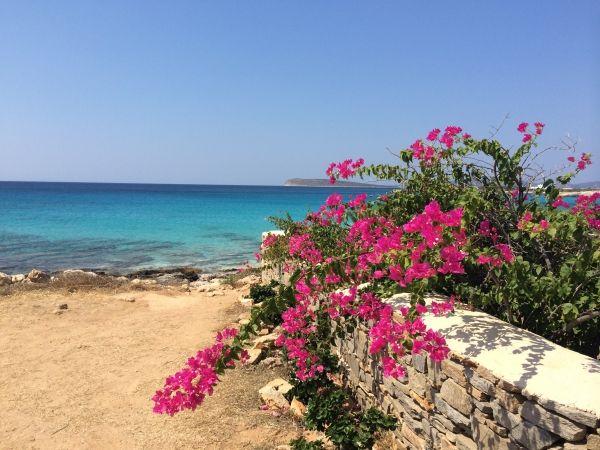Faragas beach, Paros island