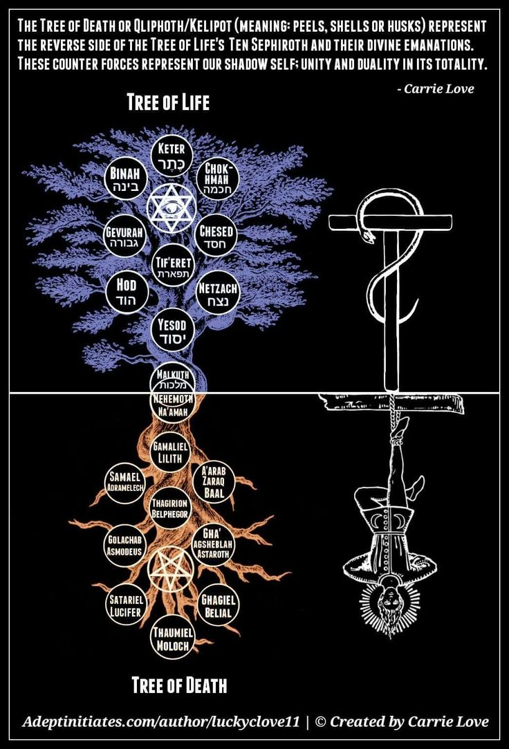 Kabbalah The Tree Of Life And The Qliphoth
