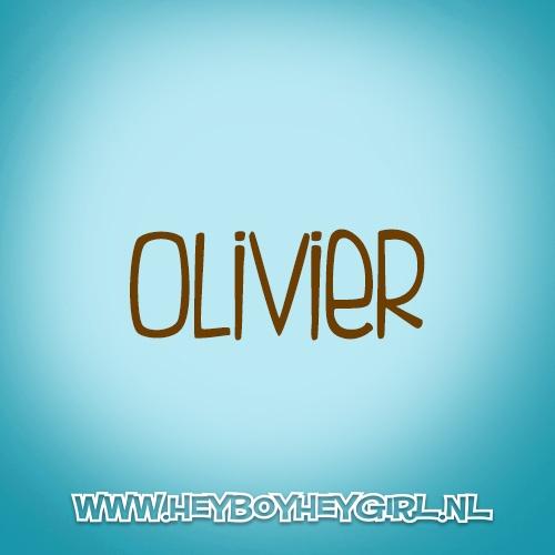 Olivier (Voor meer inspiratie, en unieke geboortekaartjes kijk op www.heyboyheygirl.nl)
