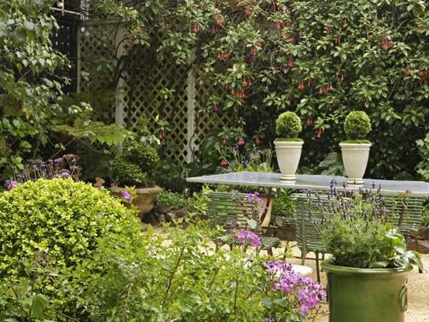 mobili da pranzo all'aperto e vasi in ceramica con piante sempreverdi
