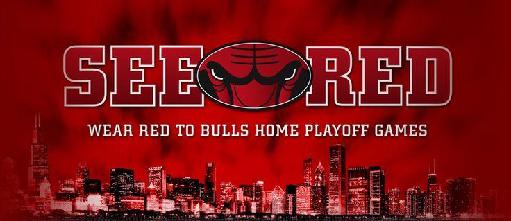 Chicago Bulls Roster 2014 | Chicago Bulls 2014