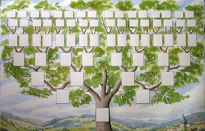 На сайте можно создать генеалогическое древо - 1