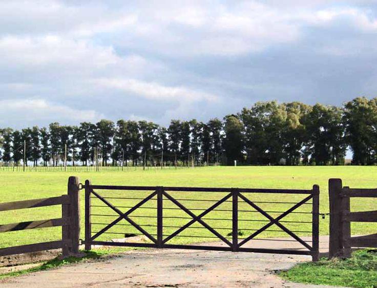 Ranch Driveway Gates | Back to Fence Gate Ideas Polo Club Driveway Gate