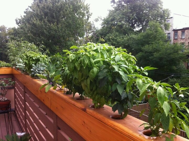 Deck railing planters - 21 Best Images About Railing Planters On Pinterest Railing