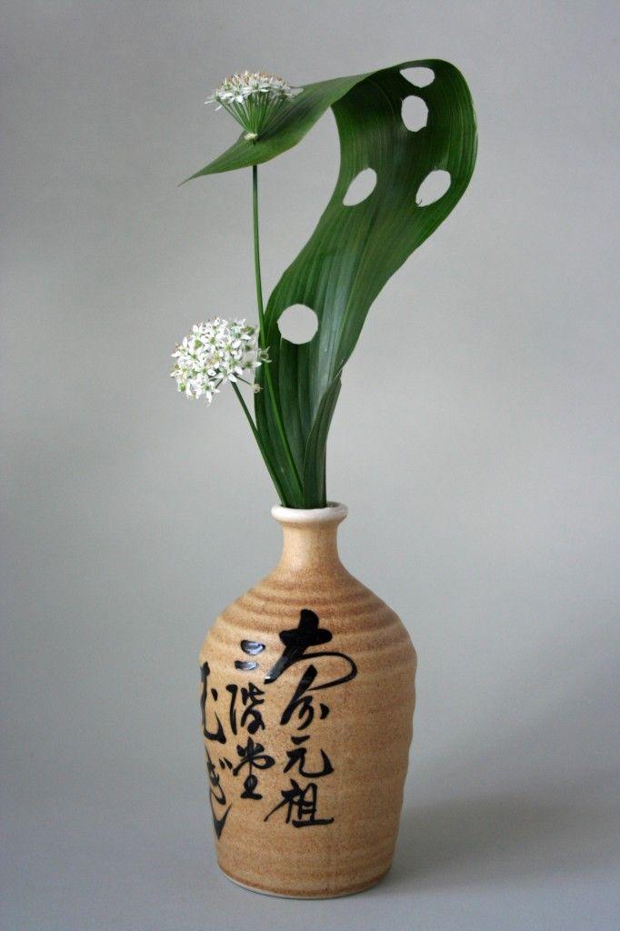 So Cool... Manipulated aspidistra leaf and allium. Keith Stanley