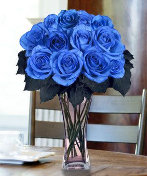blue roses-my brother loved blue roses. Hope they come up this year. RIP Gary