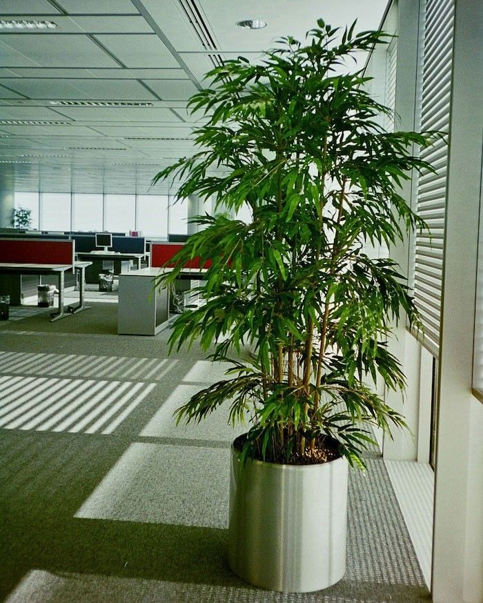 bambou artificiel comme plante artificielle pas cher et fausse fleur