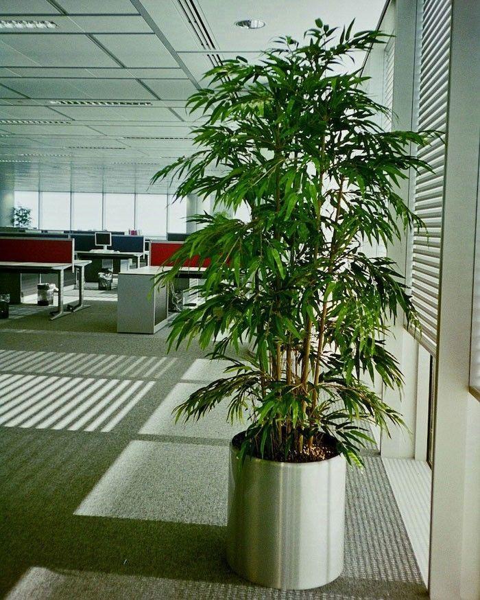 Les 25 meilleures id es concernant bambou artificiel sur pinterest plante l - Plante artificielle pas chere ...