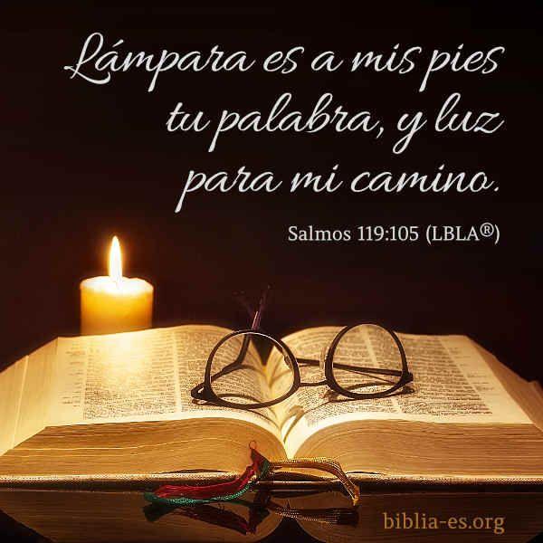 Versículo De La Biblia Salmos 119 105 Versículo De La Biblia Salmo 119 105 Salmos