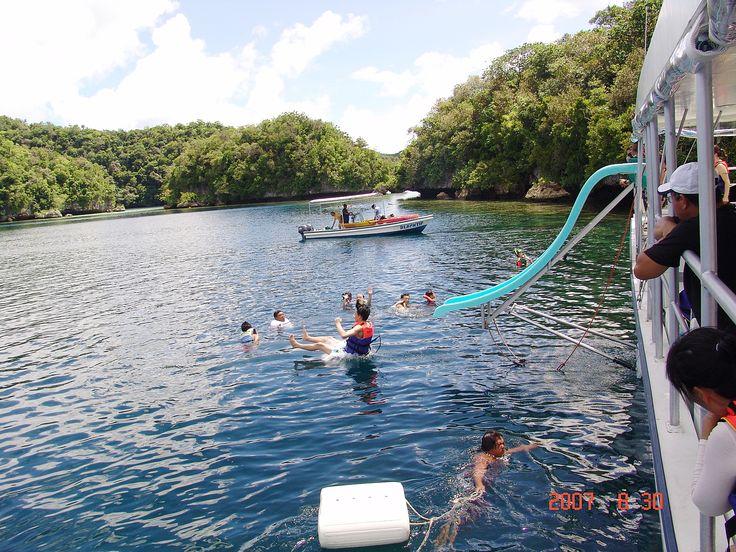 Palau sea Fly sea