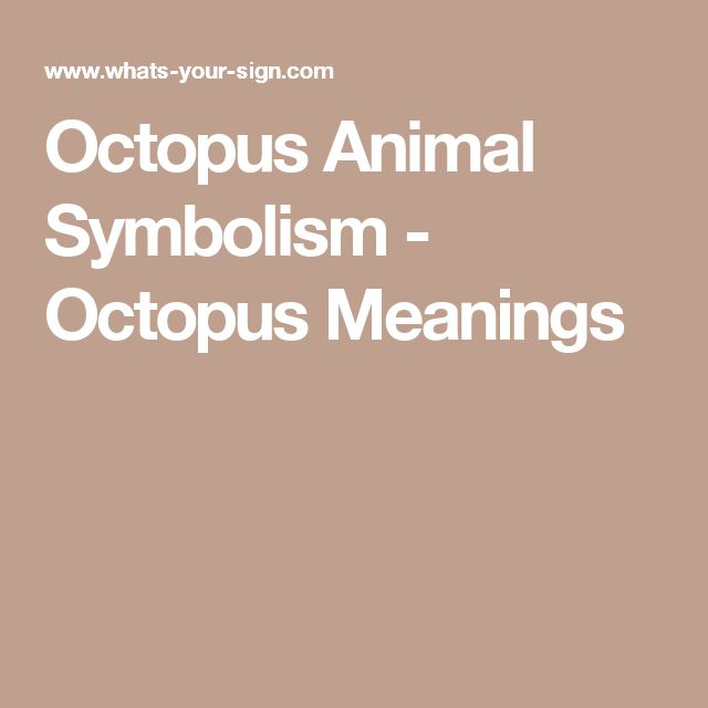 Octopus Animal Symbolism - Octopus Meanings