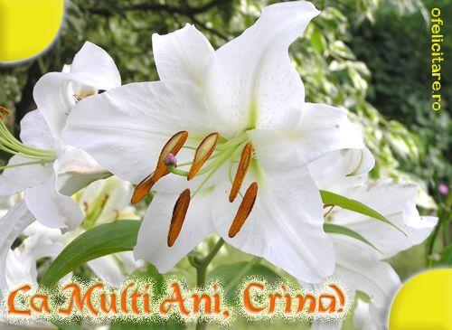 Felicitare de Florii cu mesajul La multi ani, Crina!