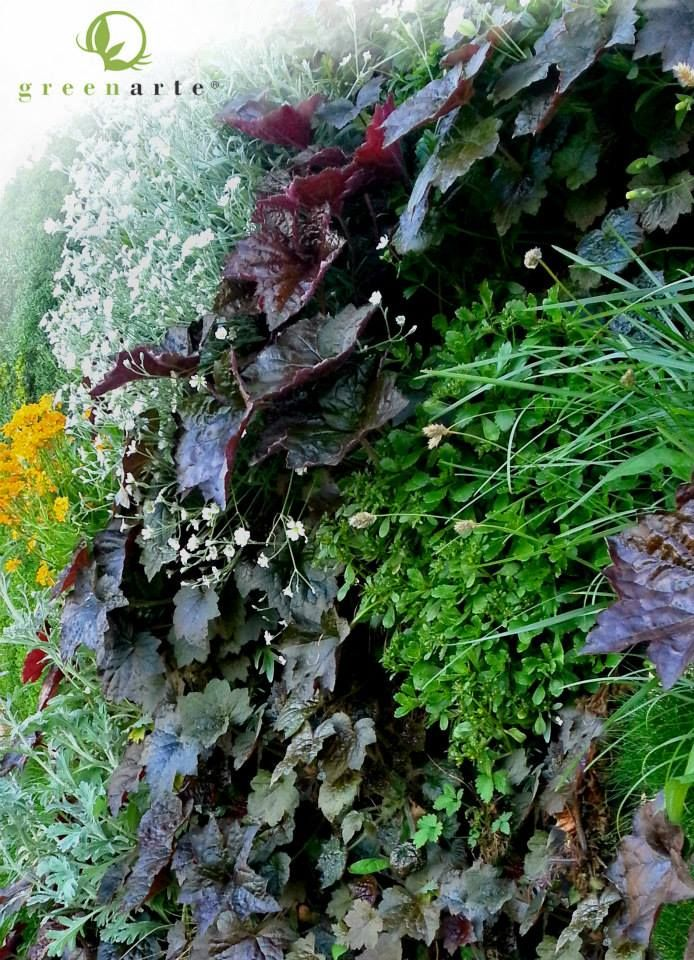 Detal zewnętrznej zielonej ściany - Greenarte