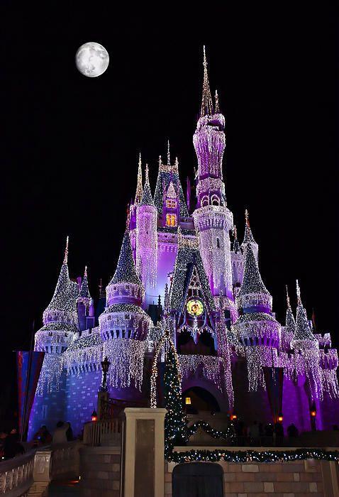 Cinderellas Castle - Christmas in Walt Disney World, Florida