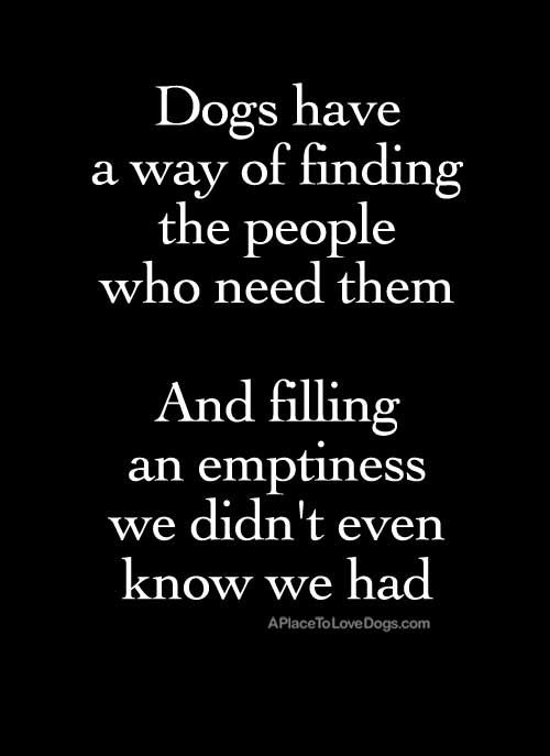 Dogs have a way of finding the people who need them, and filling an emptiness we didn't ever know we had. quote by Thom Jones