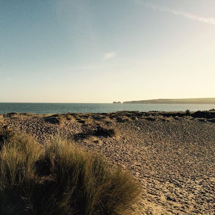 "55 Likes, 5 Comments - Jurassic Coast VW Camper Hire (@jurassiccoastvwcamperhire) on Instagram: ""The sand dunes of #studlandbay in beautiful sunshine 🌿 Explore everything our coastline has to…"""