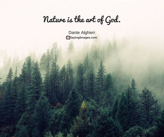 Nature Quotes, Short Nature