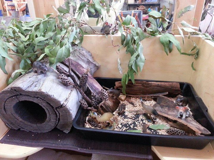 """Simple small world 'Australian Bush' set-up at Forever Friends ELC and Kindergarten - would be nice for minibeasts too ("""",)"""