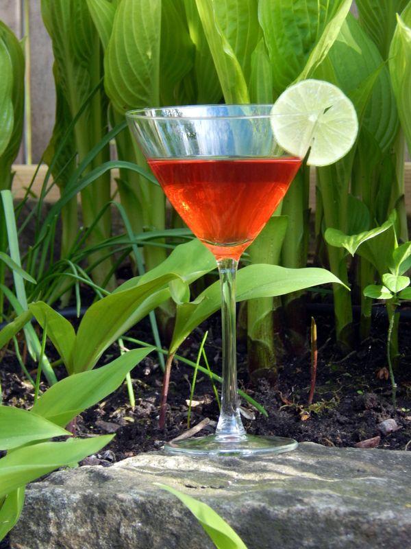 Pink Gin - Krabba tipsar!