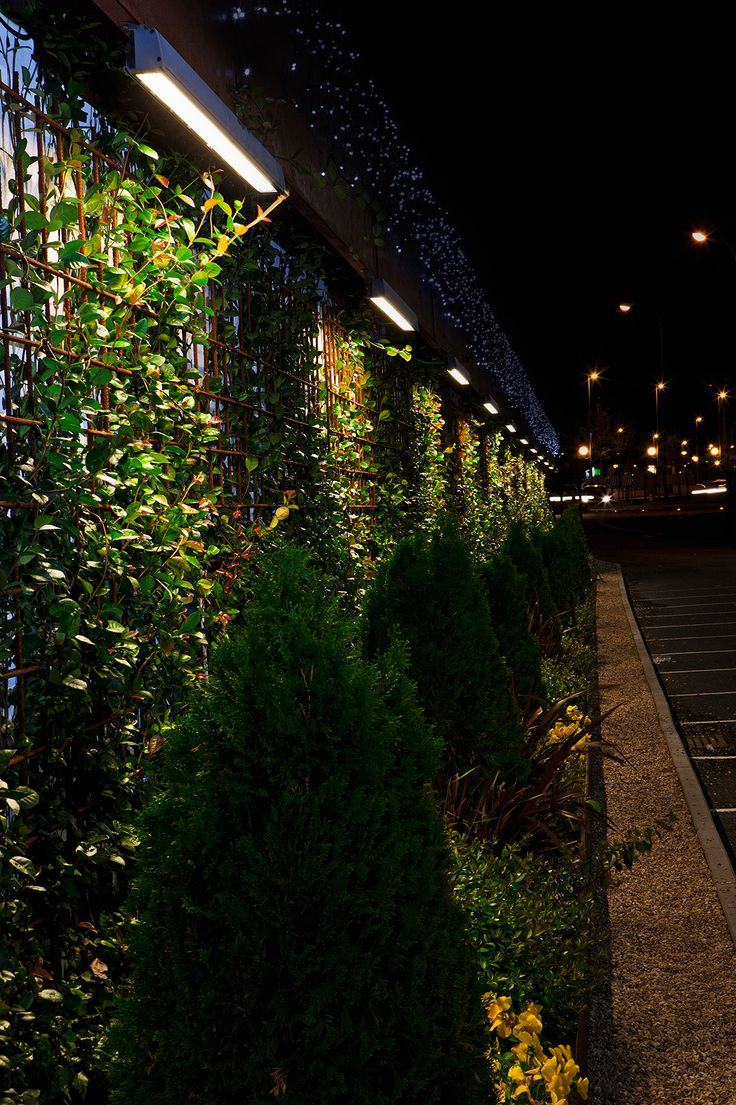 9 best garden lighting inspiration images on pinterest - Garden center madrid ...