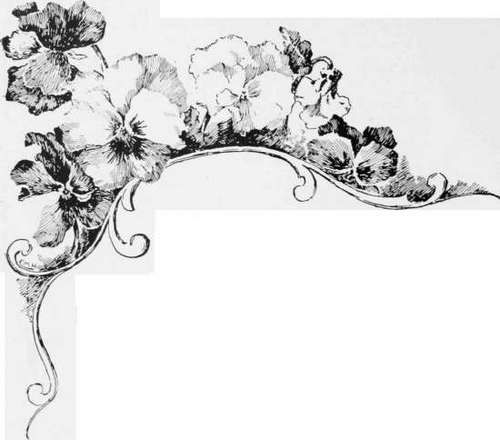 Pin By Vena Moolman On Drawing Flowers Pencil Drawings