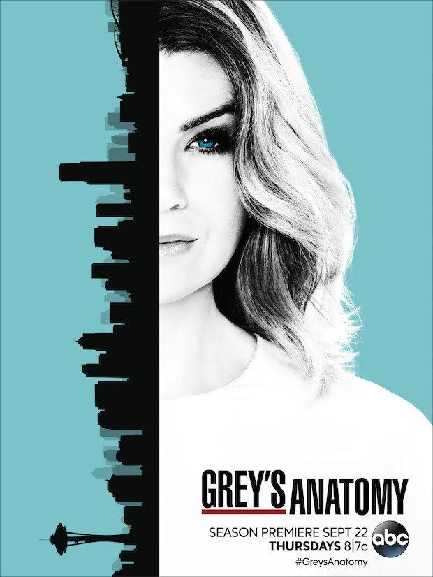 Grey's Anatomy: cartaz da 13ª temporada com Meredith e Seattle