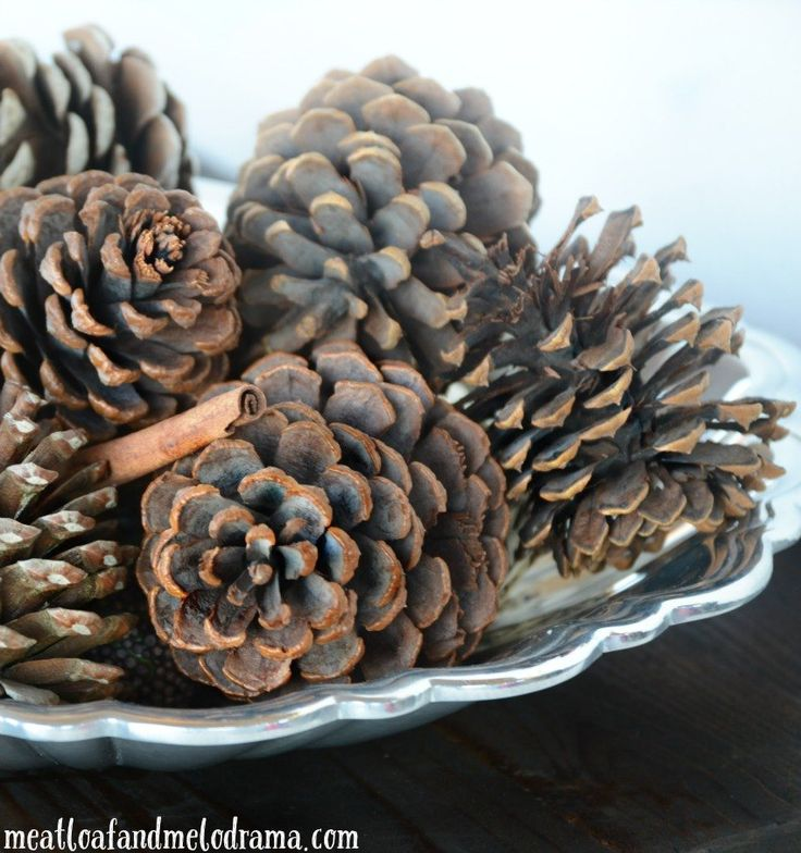 14 best images about for the home on pinterest the for Small pine cone crafts
