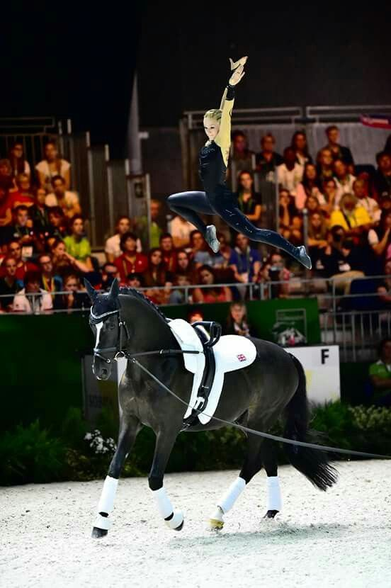 178 Best Images About Equestrian Vaulting On Pinterest