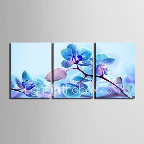 E-HOME® Stretched Canvas Art Blue Flowers Decoration Painting Set of 3 2017 - $55.99