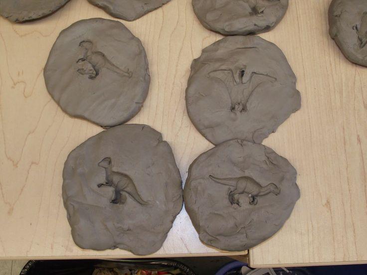 La maternelle de Francesca: Nos fossiles!                                                                                                                                                     Plus