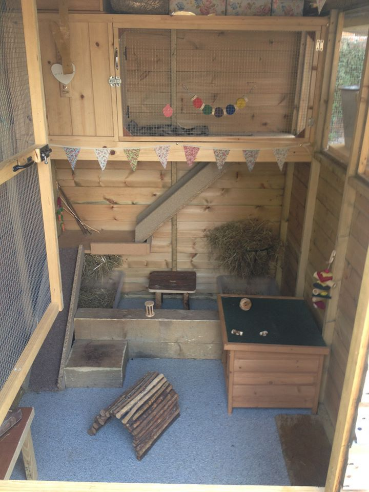 The 25 Best Rabbit Shed Ideas On Pinterest Cages For Rabbits