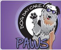 Dog Daycare, Dog Grooming and Pet Suites-- Getting started in the business!
