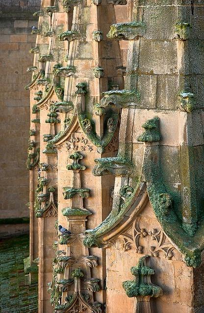 Detalle Catedral Nueva, Salamanca, Spain
