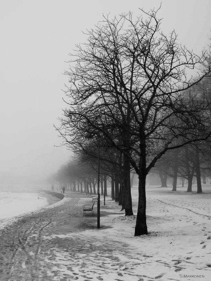 Misty landscape in Tokoinranta, Helsinki, Finland