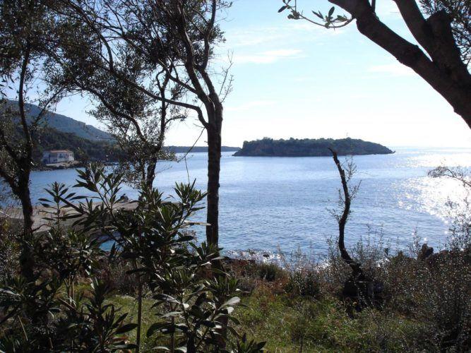The Nature near Zen Rocks